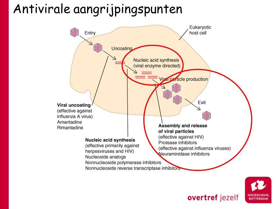 Antivirale aangrijpingspunten
