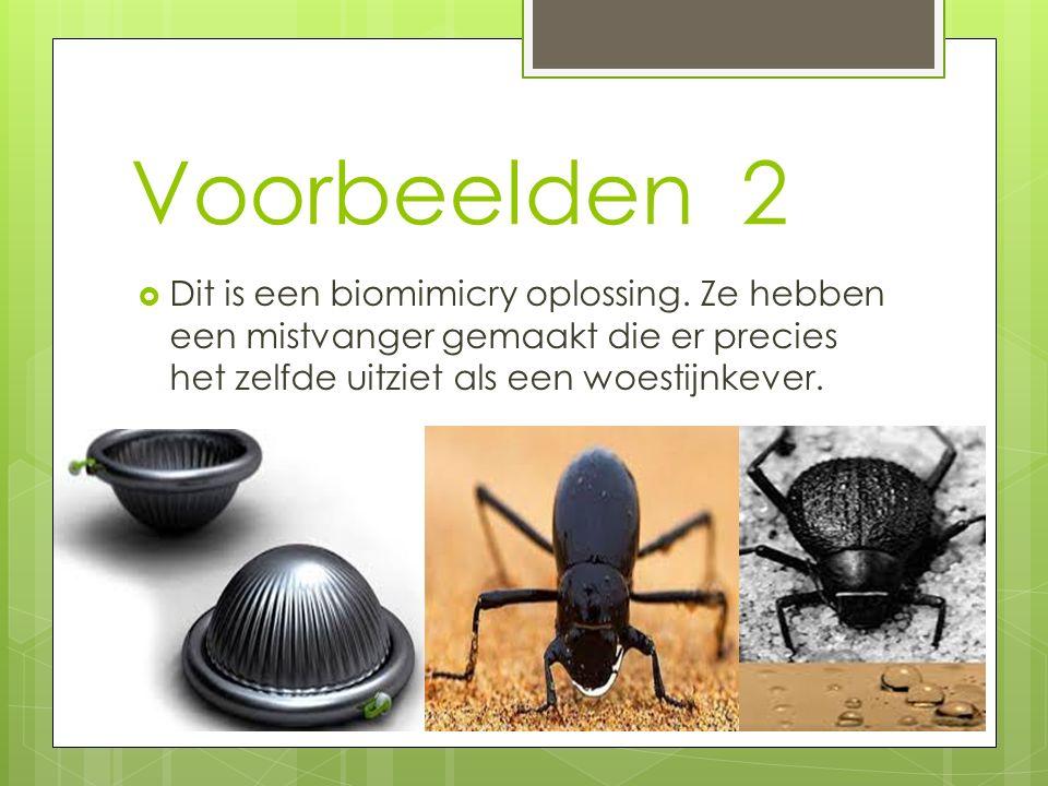 Voorbeelden 2  Dit is een biomimicry oplossing. Ze hebben een mistvanger gemaakt die er precies het zelfde uitziet als een woestijnkever.