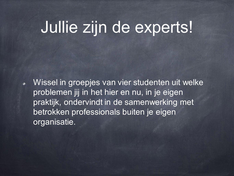 Jullie zijn de experts! Wissel in groepjes van vier studenten uit welke problemen jij in het hier en nu, in je eigen praktijk, ondervindt in de samenw