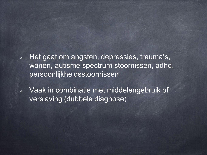 traumatisch stigmatiserend basisprincipes GGZ autonomie vermaatschappelijking