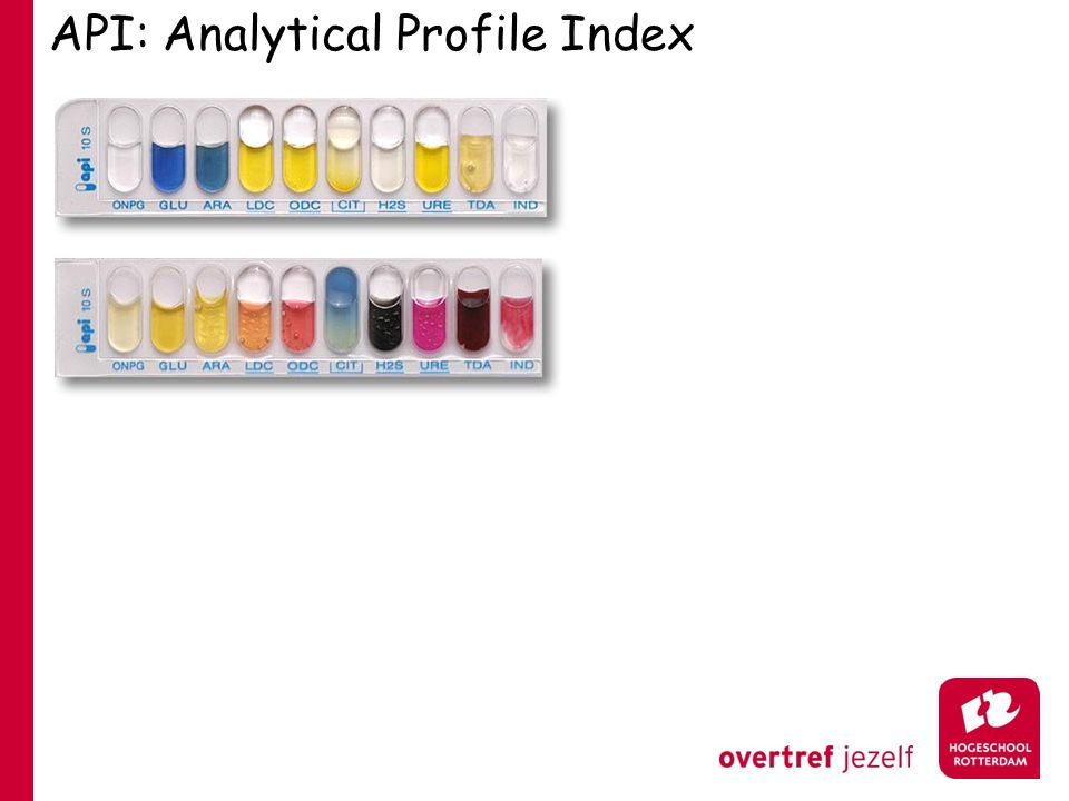 API: Analytical Profile Index