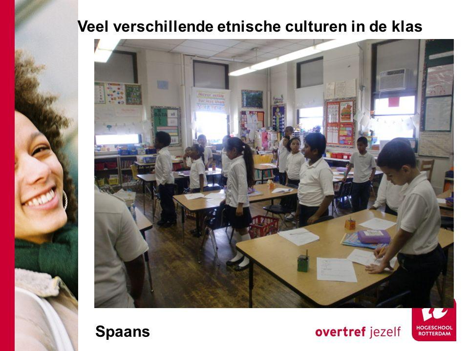 Veel verschillende etnische culturen in de klas Spaans