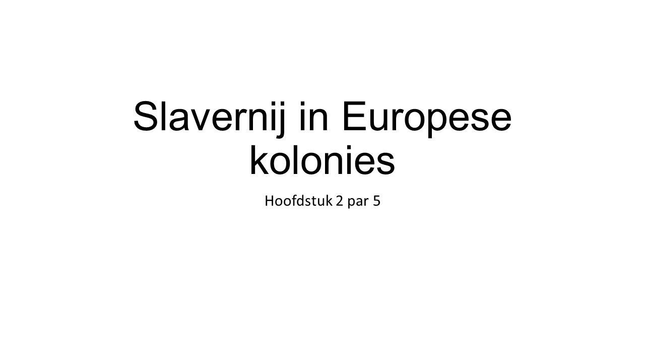Slavernij in Europese kolonies Hoofdstuk 2 par 5