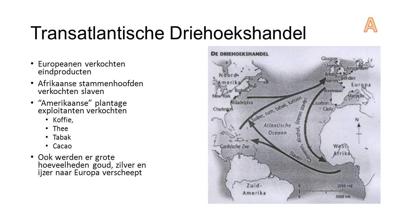"""Transatlantische Driehoekshandel Europeanen verkochten eindproducten Afrikaanse stammenhoofden verkochten slaven """"Amerikaanse"""" plantage exploitanten v"""