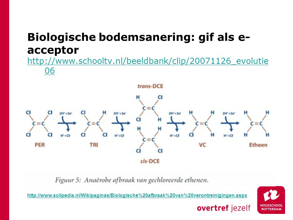 Biologische bodemsanering: gif als e- acceptor http://www.schooltv.nl/beeldbank/clip/20071126_evolutie 06 http://www.soilpedia.nl/Wikipaginas/Biologis