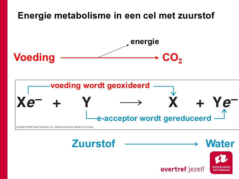 Energie metabolisme in een cel met zuurstof voeding wordt geoxideerd Voeding CO 2 WaterZuurstof energie e-acceptor wordt gereduceerd