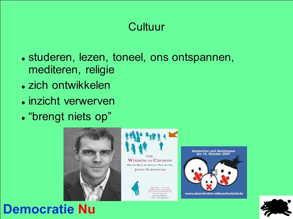 Democratie.Nu Cultuur studeren, lezen, toneel, ons ontspannen, mediteren, religie zich ontwikkelen inzicht verwerven brengt niets op