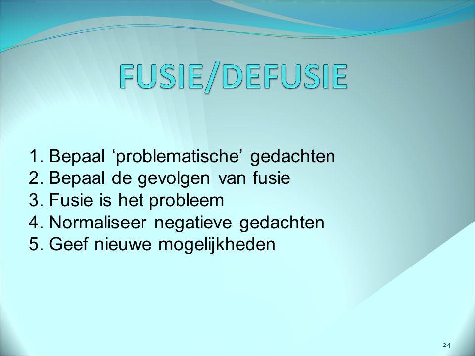 1.Bepaal 'problematische' gedachten 2. Bepaal de gevolgen van fusie 3.