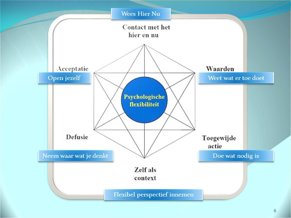 6 Wees Hier Nu Weet wat er toe doet Doe wat nodig is Flexibel perspectief innemen Neem waar wat je denkt Open jezelf