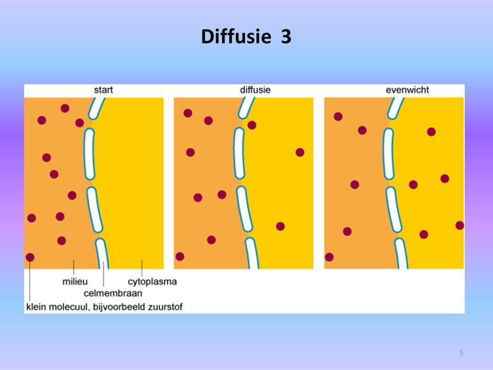 DIFFUSIE van o.a.gassen 4 1. Zuurstof 2. Koolstofdioxide 3.
