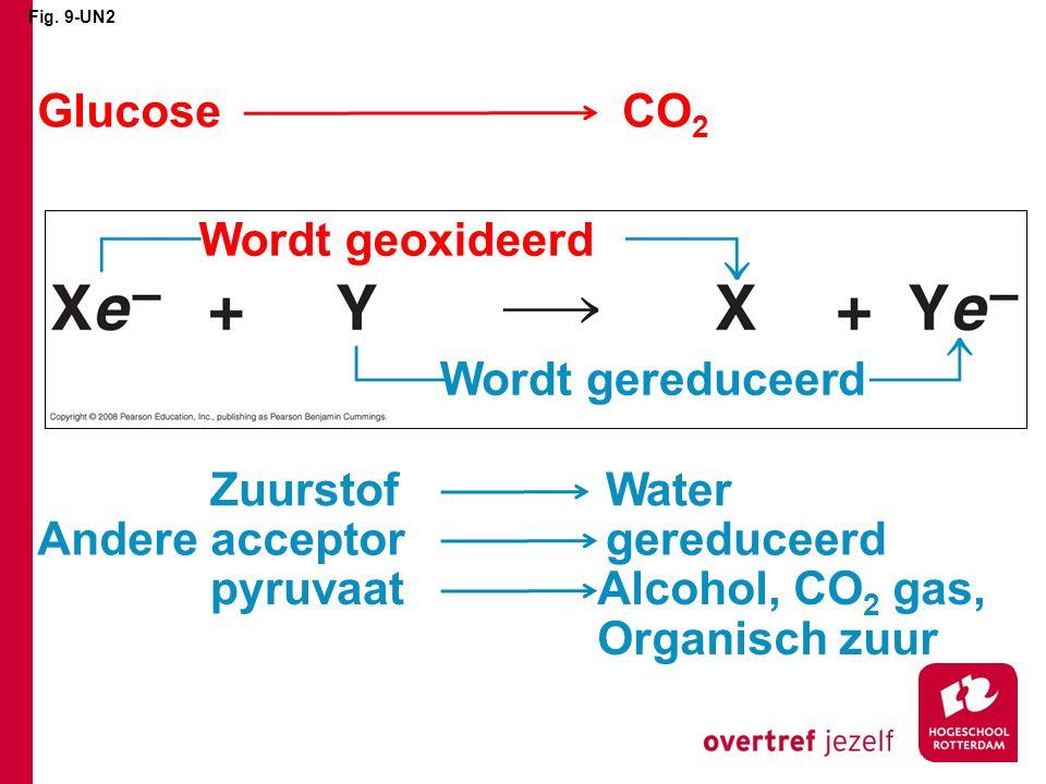 Fig. 9-UN2 Wordt geoxideerd Wordt gereduceerd GlucoseCO 2 WaterZuurstof gereduceerdAndere acceptor Alcohol, CO 2 gas, Organisch zuur pyruvaat