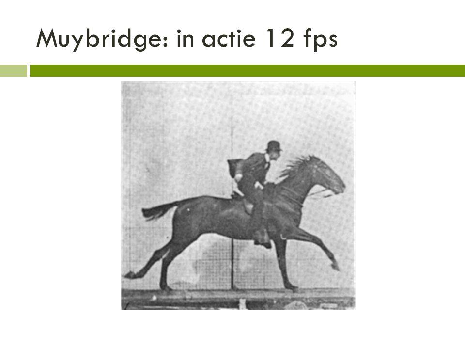 Muybridge: in actie 12 fps