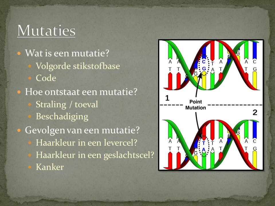 Wat is een mutatie? Volgorde stikstofbase Code Hoe ontstaat een mutatie? Straling / toeval Beschadiging Gevolgen van een mutatie? Haarkleur in een lev