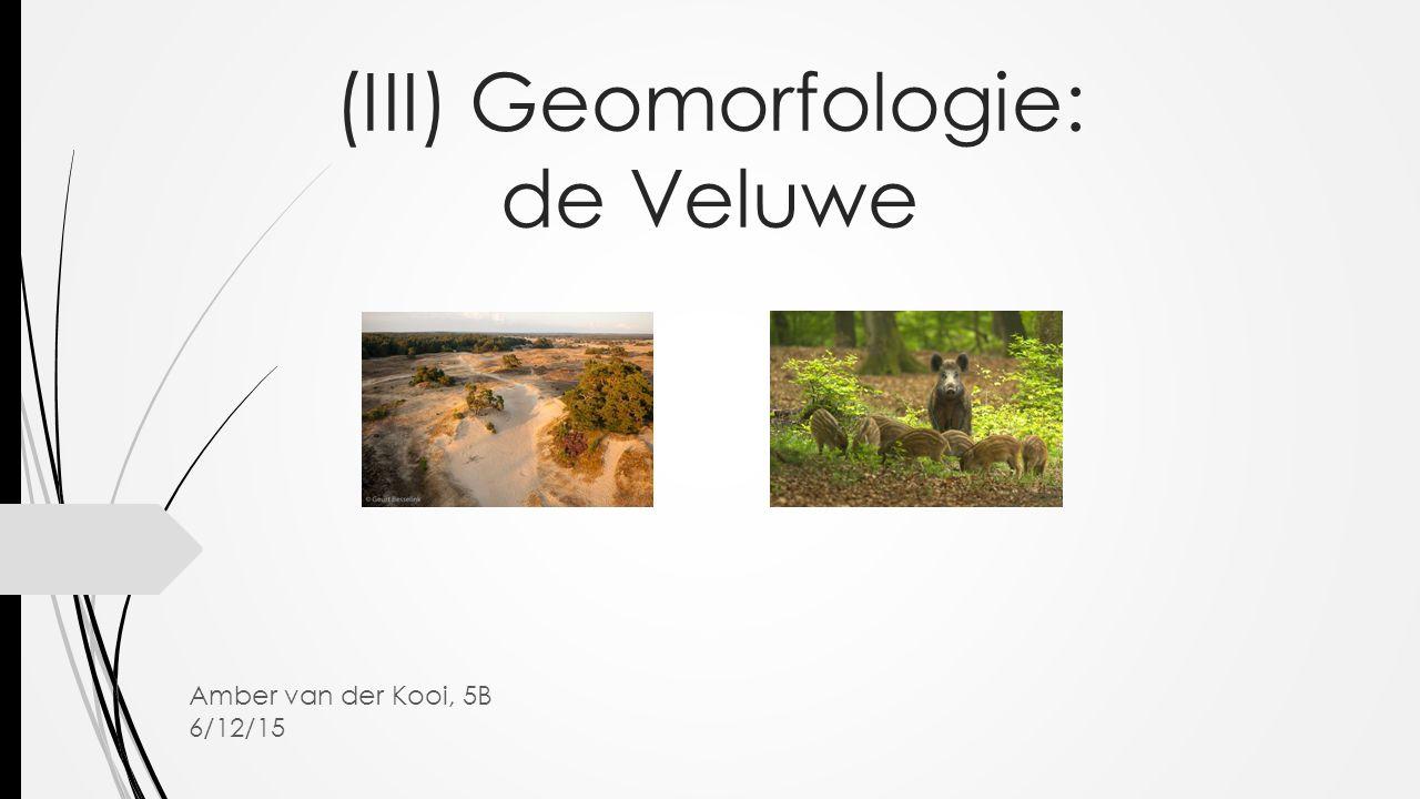 (III) Geomorfologie: de Veluwe Amber van der Kooi, 5B 6/12/15