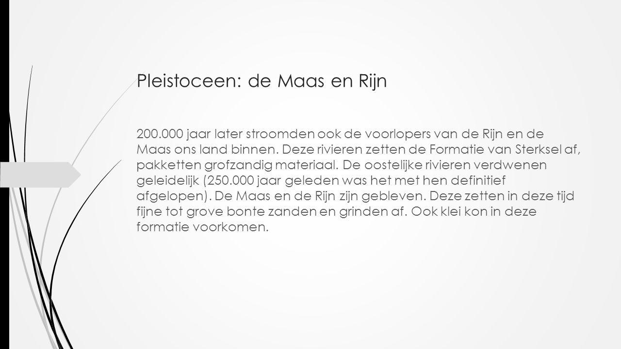 Pleistoceen: de Maas en Rijn 200.000 jaar later stroomden ook de voorlopers van de Rijn en de Maas ons land binnen. Deze rivieren zetten de Formatie v