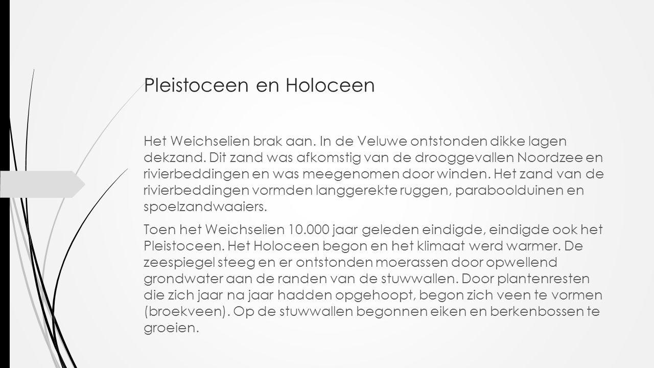 Pleistoceen en Holoceen Het Weichselien brak aan. In de Veluwe ontstonden dikke lagen dekzand. Dit zand was afkomstig van de drooggevallen Noordzee en