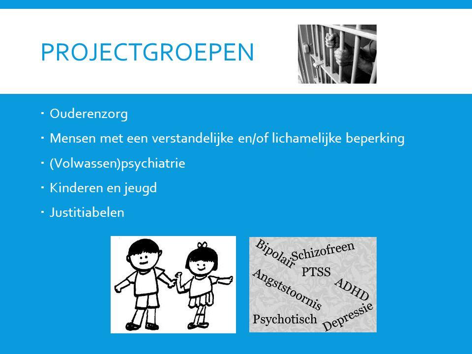 PROJECTGROEPEN  Ouderenzorg  Mensen met een verstandelijke en/of lichamelijke beperking  (Volwassen)psychiatrie  Kinderen en jeugd  Justitiabelen