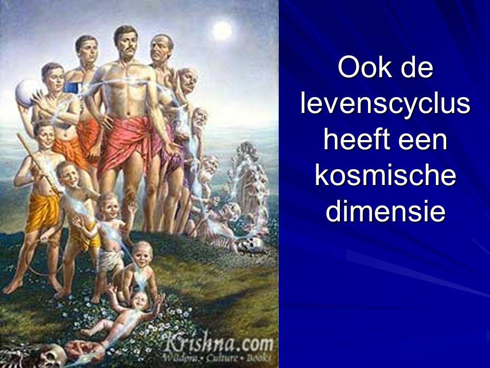 Ook de levenscyclus heeft een kosmische dimensie
