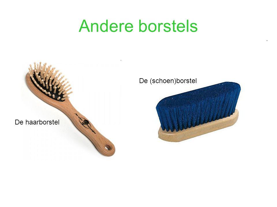 De haarborstel De (schoen)borstel
