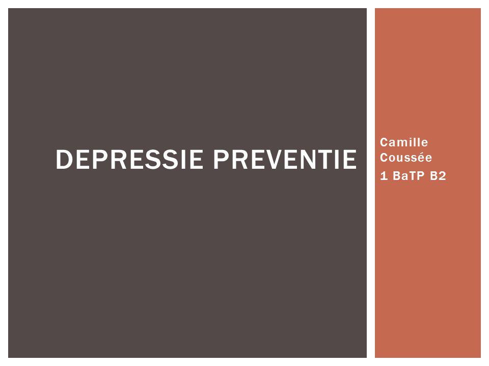 Camille Coussée 1 BaTP B2 DEPRESSIE PREVENTIE