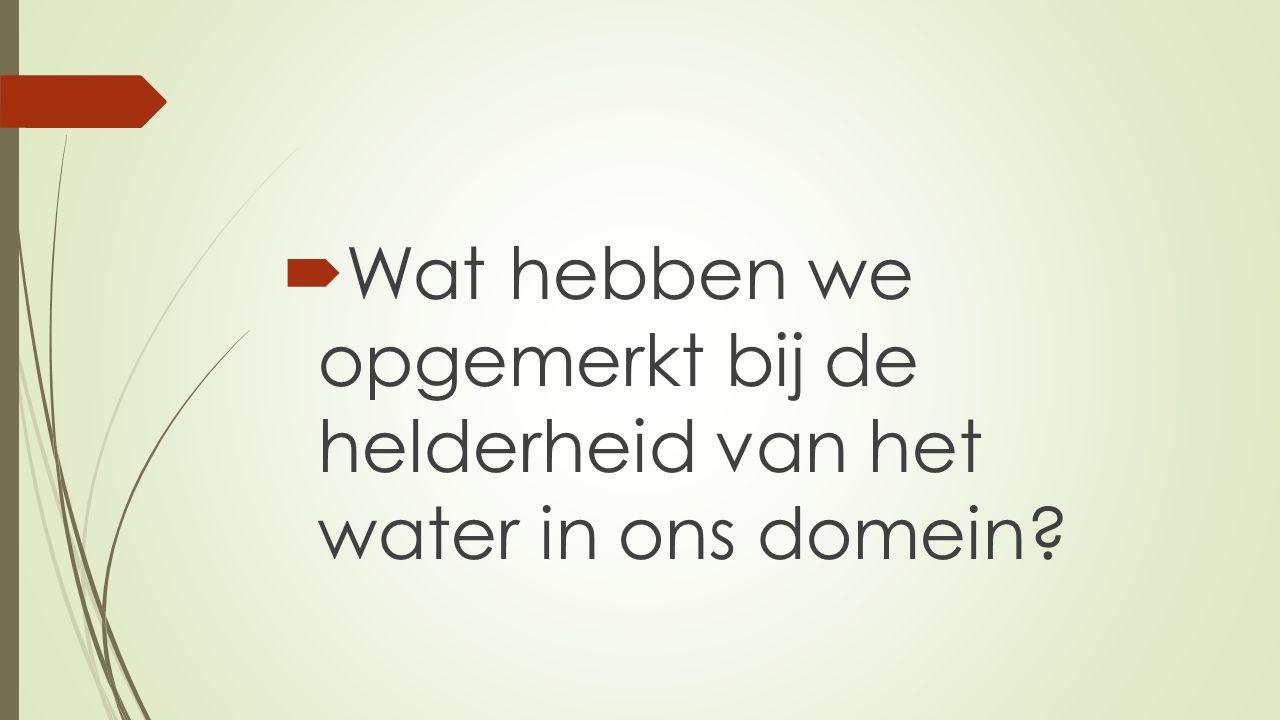  Wat hebben we opgemerkt bij de helderheid van het water in ons domein?