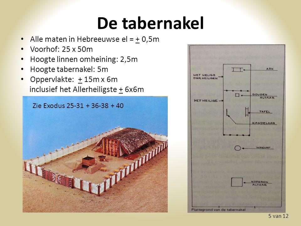 De tabernakel 5 van 12 Alle maten in Hebreeuwse el = + 0,5m Voorhof: 25 x 50m Hoogte linnen omheining: 2,5m Hoogte tabernakel: 5m Oppervlakte: + 15m x 6m inclusief het Allerheiligste + 6x6m Zie Exodus 25-31 + 36-38 + 40