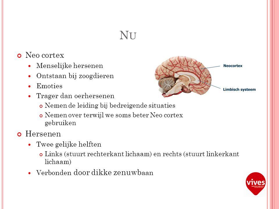 NUNU Neo cortex Menselijke hersenen Ontstaan bij zoogdieren Emoties Trager dan oerhersenen Nemen de leiding bij bedreigende situaties Nemen over terwijl we soms beter Neo cortex gebruiken Hersenen Twee gelijke helften Links (stuurt rechterkant lichaam) en rechts (stuurt linkerkant lichaam) Verbonden door dikke zenuwb aan