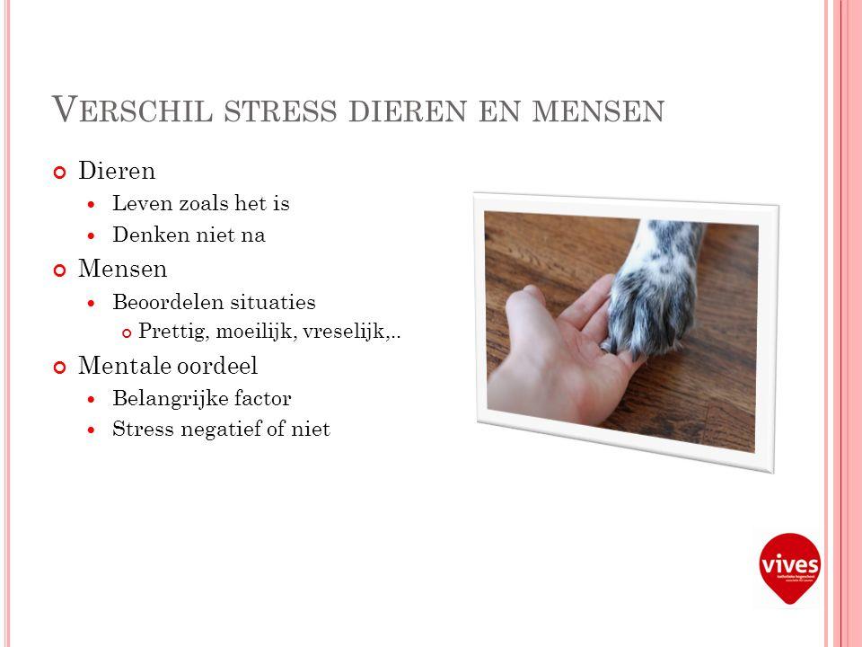 V ERSCHIL STRESS DIEREN EN MENSEN Dieren Leven zoals het is Denken niet na Mensen Beoordelen situaties Prettig, moeilijk, vreselijk,..