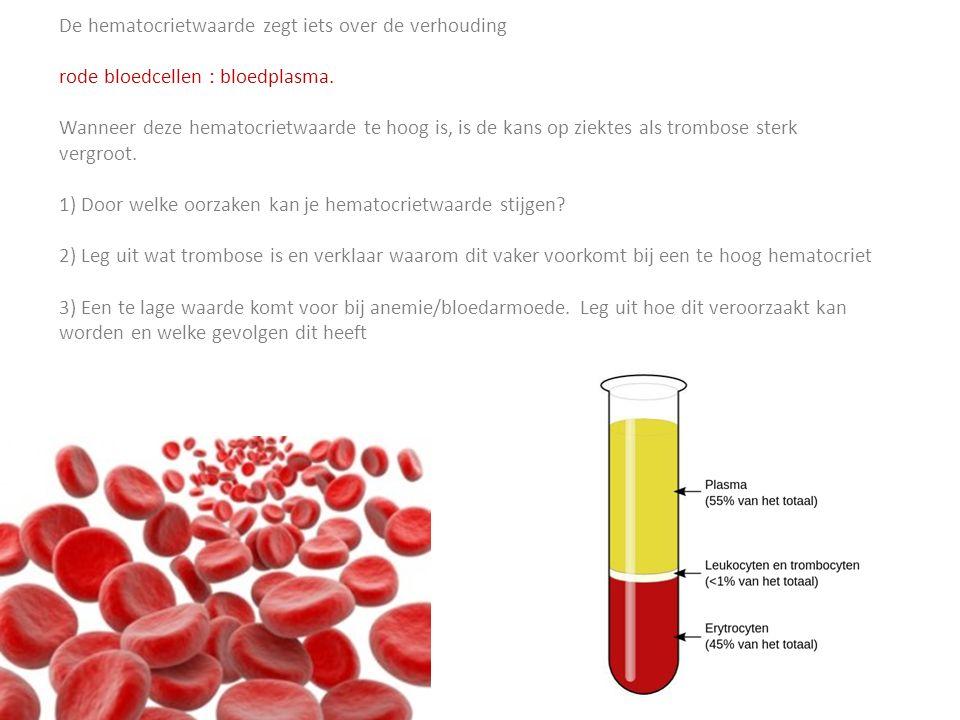 Kracht <> Uithoudingsvermogen Rood (aerobe vezels) Wit (anaerobe vezels) Langdurige inspanningVermoeibaar Steady stateKracht / explosiviteit / snelheid Vnl.
