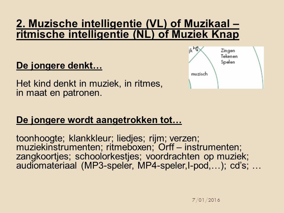 7/01/2016 2. Muzische intelligentie (VL) of Muzikaal – ritmische intelligentie (NL) of Muziek Knap De jongere denkt… Het kind denkt in muziek, in ritm