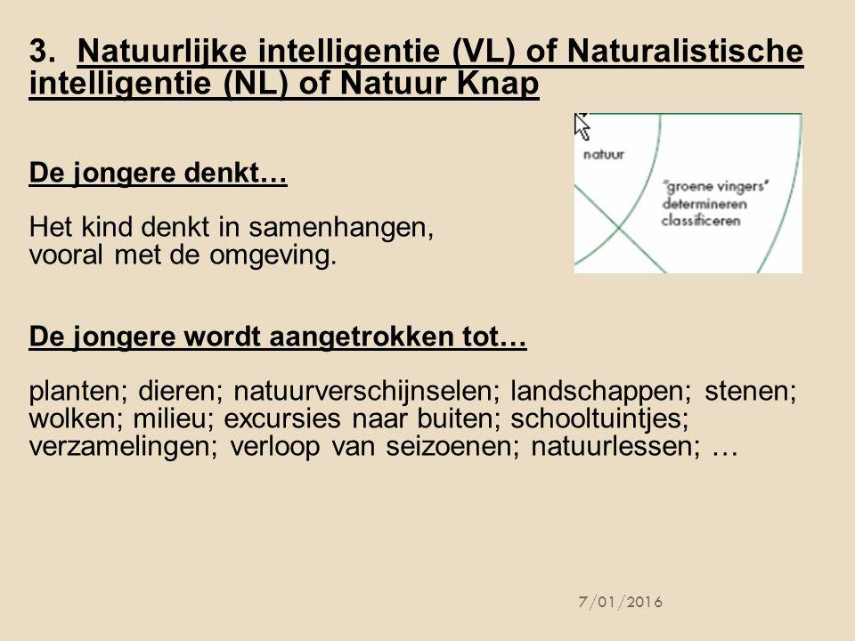 7/01/2016 3.Natuurlijke intelligentie (VL) of Naturalistische intelligentie (NL) of Natuur Knap De jongere denkt… Het kind denkt in samenhangen, voora