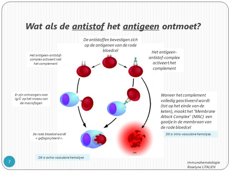 Wat als de antistof het antigeen ontmoet.