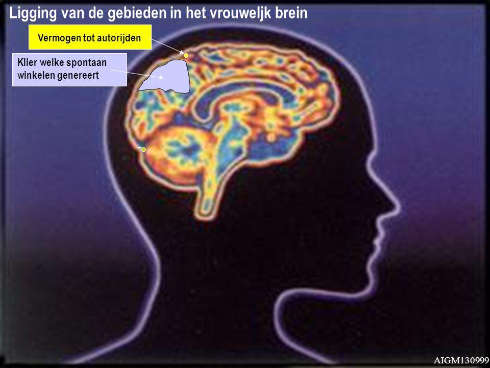 Ligging van de gebieden in het vrouweljk brein Vermogen tot autorijden AIGM130999
