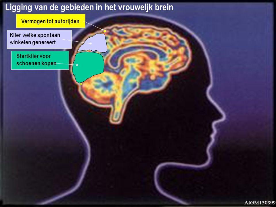 Ligging van de gebieden in het vrouweljk brein Klier welke spontaan winkelen genereert Vermogen tot autorijden AIGM130999