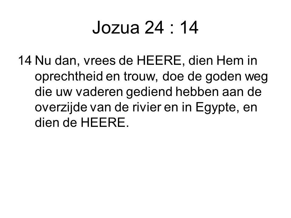 Jozua 24 : 14 14Nu dan, vrees de HEERE, dien Hem in oprechtheid en trouw, doe de goden weg die uw vaderen gediend hebben aan de overzijde van de rivie