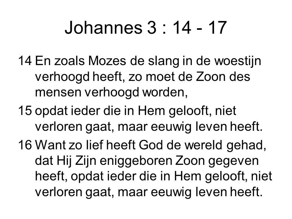 Johannes 3 : 14 - 17 14En zoals Mozes de slang in de woestijn verhoogd heeft, zo moet de Zoon des mensen verhoogd worden, 15opdat ieder die in Hem gel