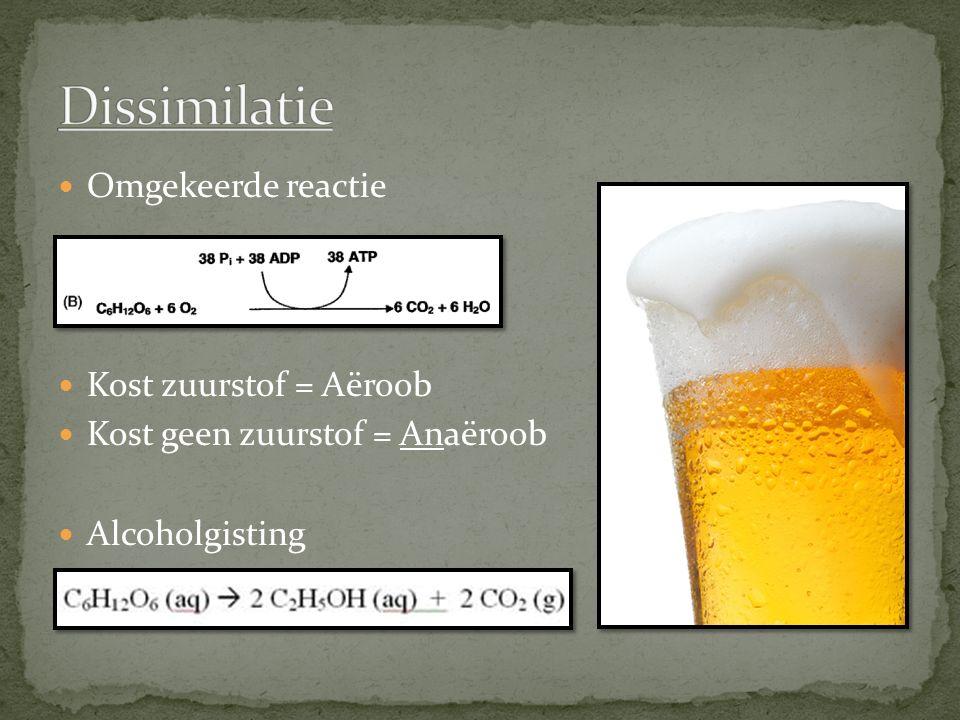 Omgekeerde reactie Kost zuurstof = Aëroob Kost geen zuurstof = Anaëroob Alcoholgisting