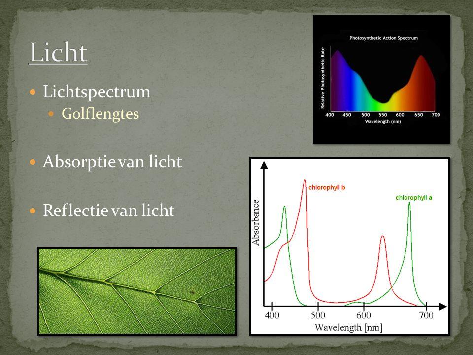 Lichtspectrum Golflengtes Absorptie van licht Reflectie van licht