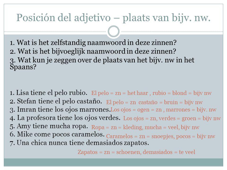 Posición del adjetivo – plaats van bijv. nw. 1. Wat is het zelfstandig naamwoord in deze zinnen.