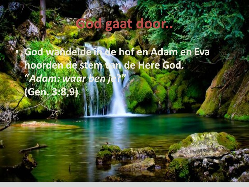 God gaat door.. God wandelde in de hof en Adam en Eva hoorden de stem van de Here God.