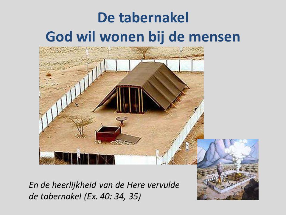 De tabernakel God wil wonen bij de mensen En de heerlijkheid van de Here vervulde de tabernakel (Ex.