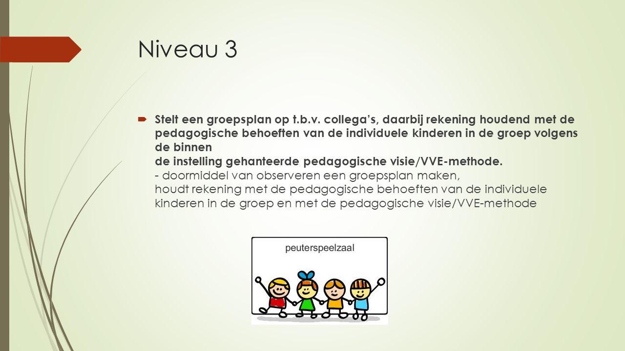 Niveau 3  Stelt een groepsplan op t.b.v. collega's, daarbij rekening houdend met de pedagogische behoeften van de individuele kinderen in de groep vo
