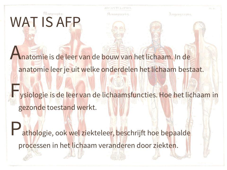 WAT IS AFP A natomie is de leer van de bouw van het lichaam.