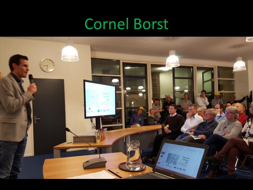 Cornel Borst