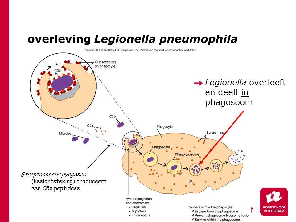 overleving Legionella pneumophila Streptococcus pyogenes (keelontsteking) produceert een C5a peptidase Legionella overleeft en deelt in phagosoom