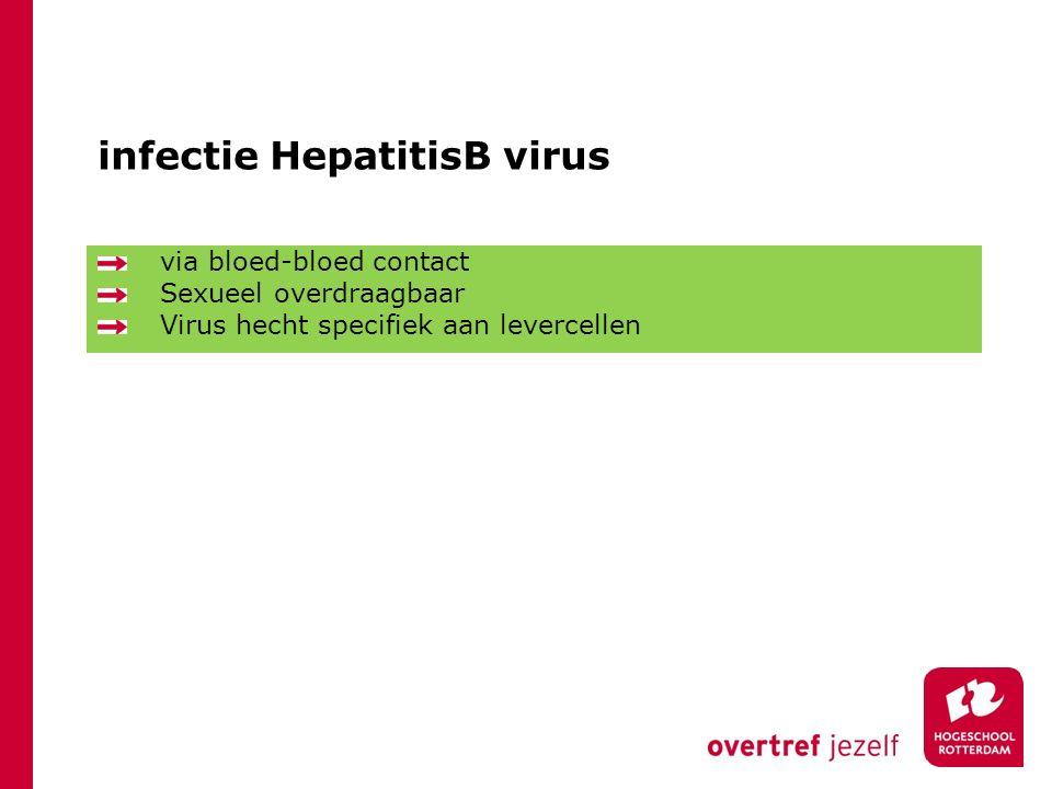 infectie HepatitisB virus via bloed-bloed contact Sexueel overdraagbaar Virus hecht specifiek aan levercellen
