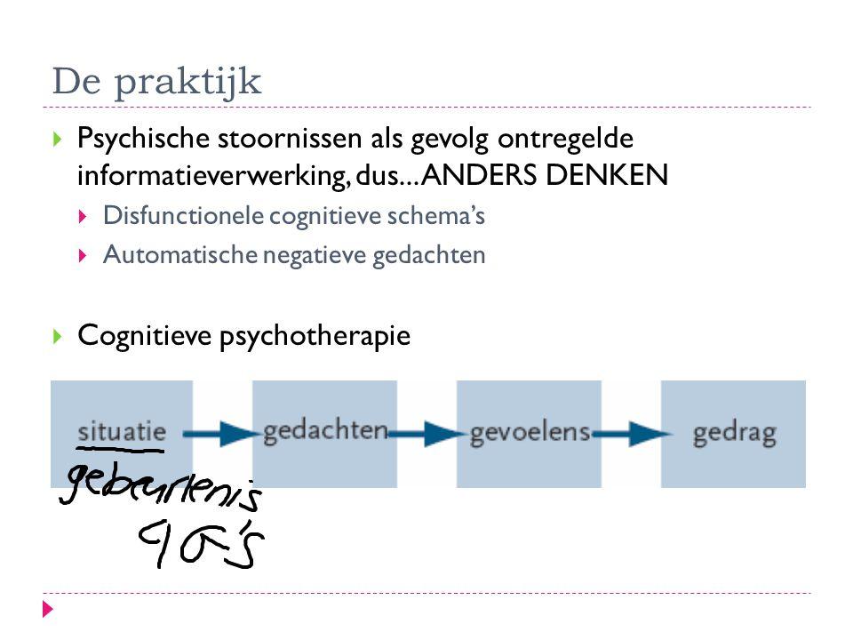 De praktijk  Psychische stoornissen als gevolg ontregelde informatieverwerking, dus...