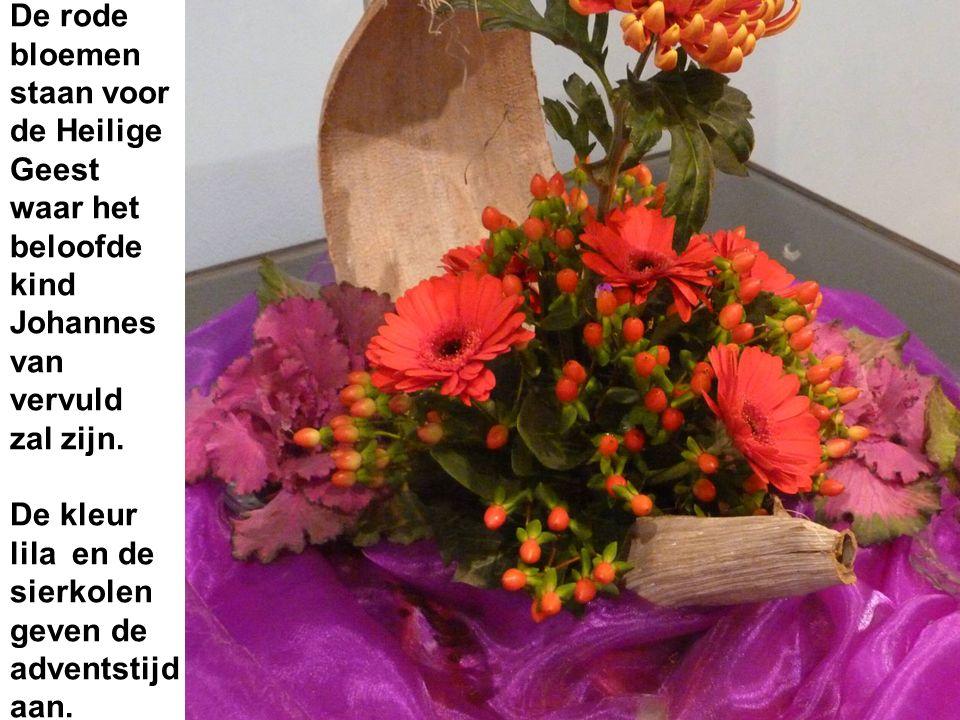 De rode bloemen staan voor de Heilige Geest waar het beloofde kind Johannes van vervuld zal zijn.