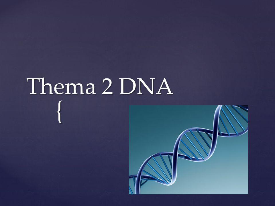 { Thema 2 DNA