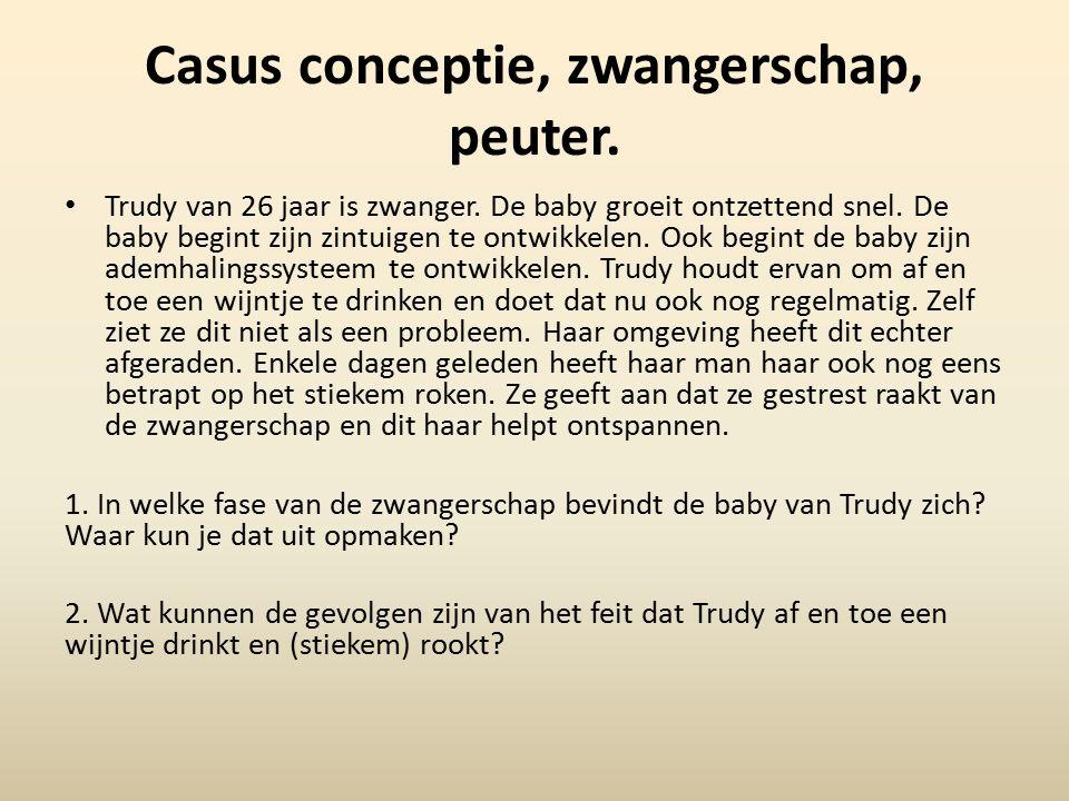 Casus conceptie, zwangerschap, peuter.Trudy van 26 jaar is zwanger.